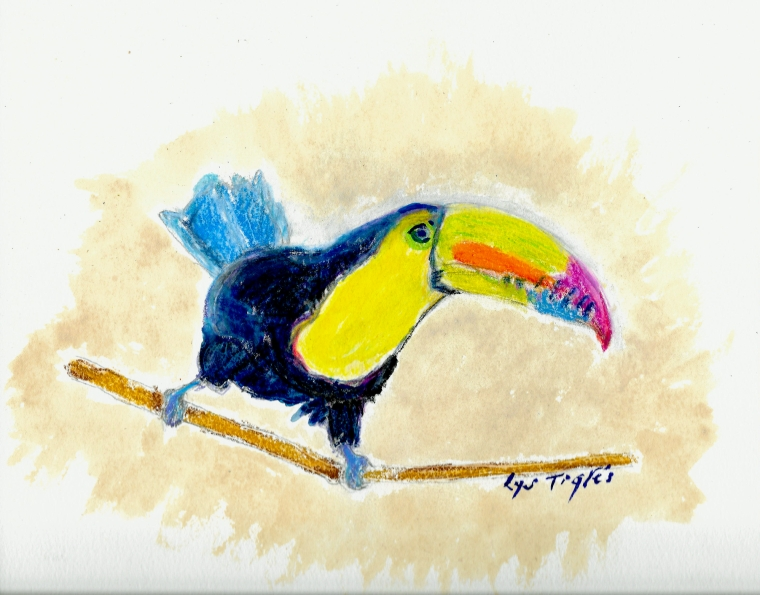 ToucanMED